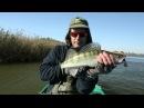 Диалоги о рыбалке Астрахань