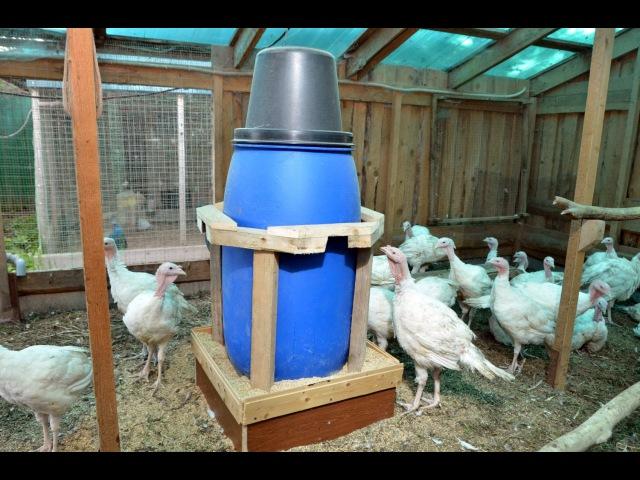 Бункерная кормушка из бочки с кормовым столом. Птицеводческое хозяйство Маруся и Медведь