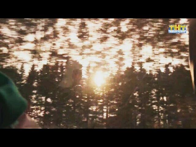 St.fire_owl video