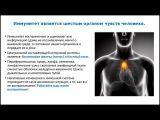 Ольга Комарова - Как защитить иммунитет и стать свободным от вирусов, паразитов  ...