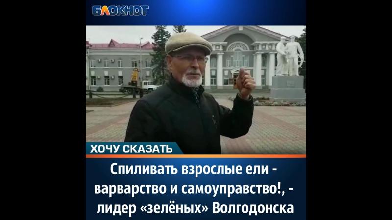 Спиливать взрослые ели - варварство и самоуправство! - лидер «зелёных» Волгодонска