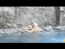 Белая Медведица бросилась на помощь увидев, как маленький медвежонок тонет.