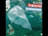 5 фактов о пластике, которые вы ещё не знали