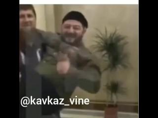 [Kavkaz vine]