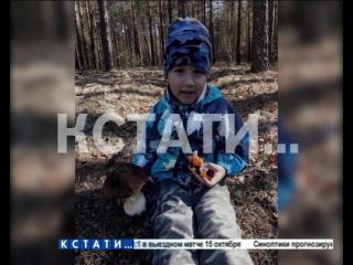 Чиновник-герой - 4-летний Ярослав был спасен, потому что волонтер ослушался приказа начальства