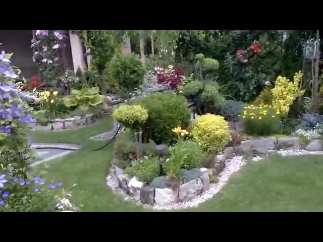 Piękny ogród przełom czerwca lipca - beautiful garden
