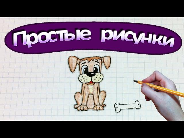 Простые рисунки 332 Как нарисовать собаку