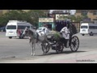 Дорога Хургада - Луксор -3. The Road Hurghada - Luxor -3. طريق الغردقة - الأقصر -3. Жизнь в Египте