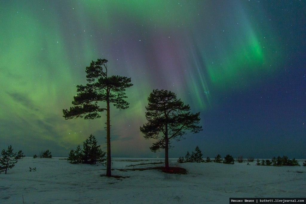 фото ягры северодвинск