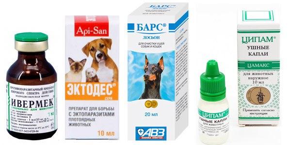 Как лечить собаку от клеща в домашних условиях