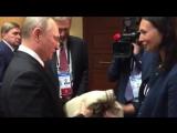 Путину после пресс-конференции передали свитер от перуанки