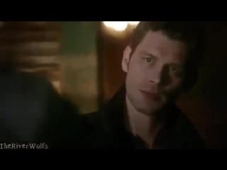 Klefan {Klaus & Stefan} vine