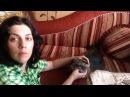 Зоопсихолог Елена Лотиева. Марковка отдохнул и всё вспомнил!