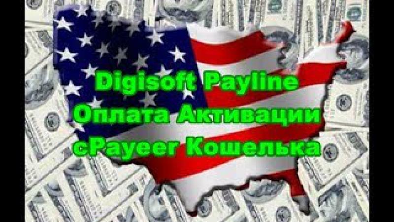 ✅ Оплата кабинета digisoft payline с вашего счета Payeer