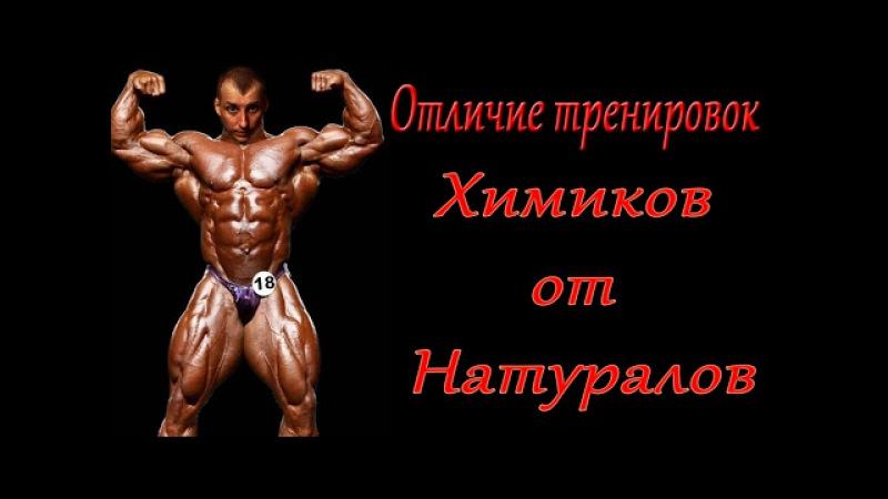 СЕЛУЯНОВ. Натуральный тренинг. Отличие от тренировок на курсе. №18