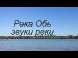 Река Обь, пригород Новосибирска. Звуки реки. Путешествия по Новосибирской облас ...
