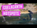 Black Desert Online : Introduction to Coelacanth Hotspots