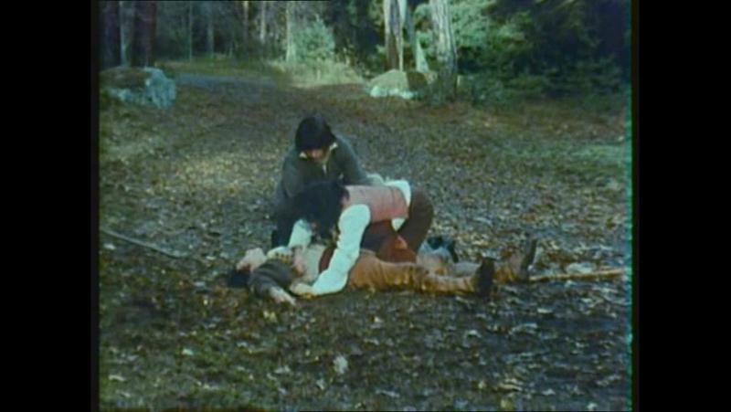 Жозеф Бальзамо (1973). 2 серия