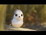 Песочник  Piper (2016) Короткометражный мультфильм