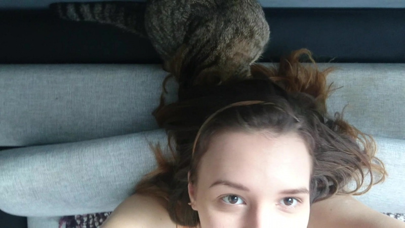 Кошка играет с волосами 2 / Кошка стилист-парикмахер