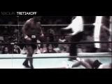 Tyson |||GMMA||| tretiakoff