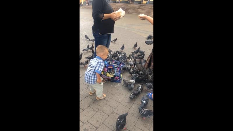 Моя Любофьььь❤️и голуби 💕люблюбольшежизни