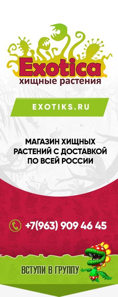 Афиша Самара Выставка ХИЩНЫХ РАСТЕНИЙ в САМАРЕ!!!
