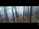 Roald Velden - She's Something Else (Original Mix)