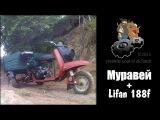 Муравей и мотор lifan 188f 400см3 13л.с.