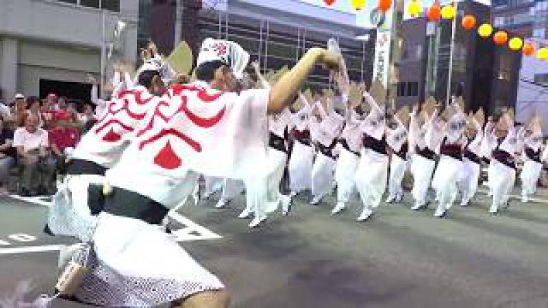 「 京都外国語大学&藝茶楽」阿波踊り2017 YONDEN演舞場8 14