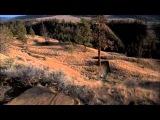 Anthill Films - Follow Me - 1st Scene