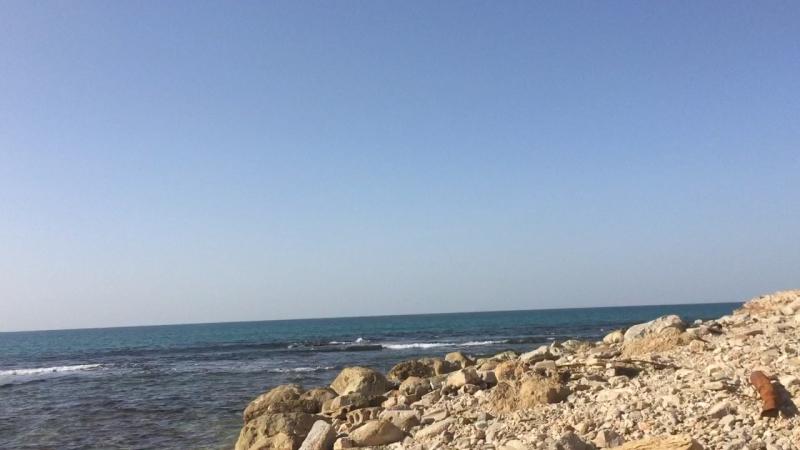 Израиль 🇮🇱 ✌🏽️🌴✡️ 07.12.16☀️️