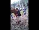 Мужик весит как конь. Испугал его и получил привет!
