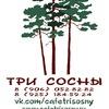 Кафе «Три сосны» в Краснознаменске
