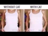 😻С котом и 😼 без кота