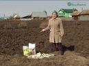 Как повысить плодородие почвы Восстановление плодородия почвы