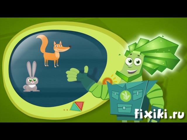 Фикси советы Как зимуют звери обучающий мультфильм для детей