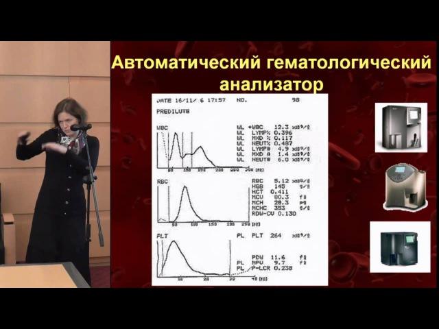 Клинический анализ крови: рутинные и современные способы его интерпретации