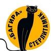 БАГИРА Стерлитамак. Помощь бездомным животным