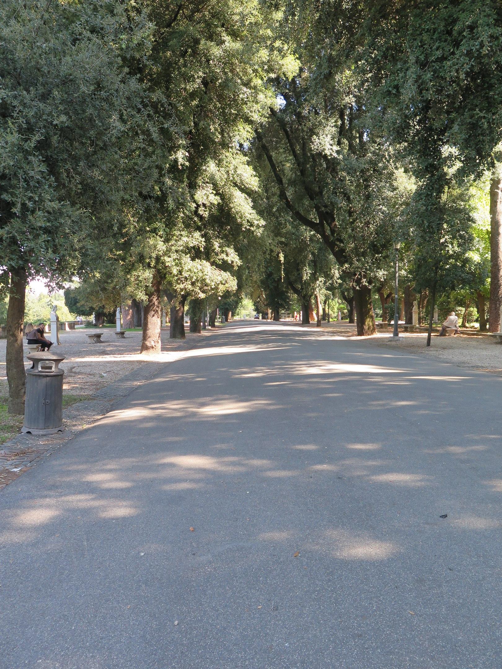 Раком в кустах парка на прогулке видео онлайн скрытой камерой смотреть онлайн фотоография