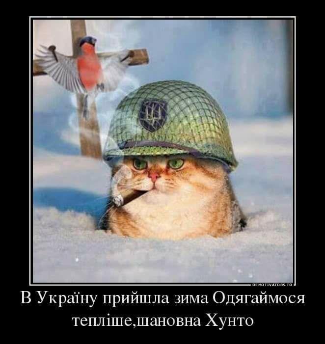 """Украина и США обсудили детали совместного военного учения """"Си Бриз-2017"""" - Цензор.НЕТ 1992"""