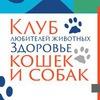 Клуб любителей животных. Здоровье кошек и собак