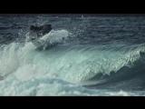 Фьюз x Лион Покоряя волны