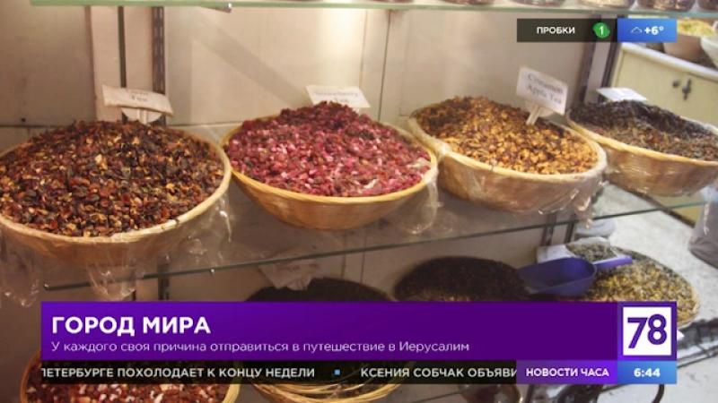 Путешественник Александр Жданов в программе