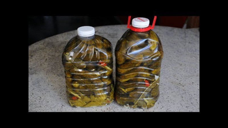 Огурцы в Пластиковой Бутылке. Выпуск №272
