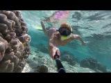Sun Aqua Vilu Reef Maldives 5*  2017 Риф под водой #5