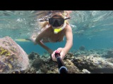 Sun Aqua Vilu Reef Maldives 5*  2017 Риф под водой #7