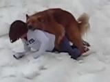 Собака хочет трахать девушку naslednik trona555@gmail com