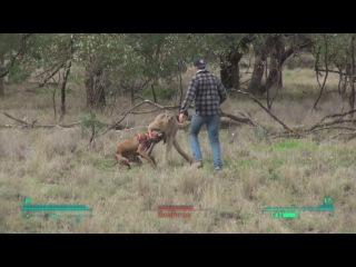 Lone Wanderer vs. Kangaroo