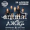Animal Джаz | 28.04.17 | Yalta | Калининград